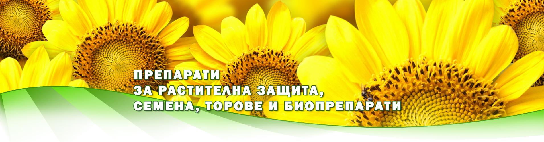 Апогей 91 ООД Бургас